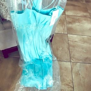 Gown (David's bridal brand new)